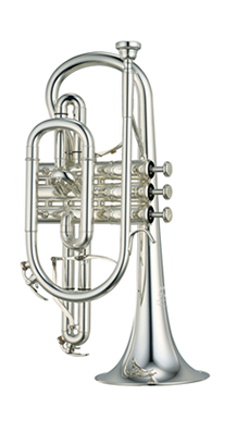 Best Cornet Lessons in Dallas
